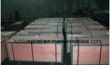 Nylon шкафы шестерни для консервооткрывателя строба, шкафы шестерни