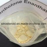 焼跡の脂肪のための有効な医学のステロイドの粉Trenbolone Enanthate