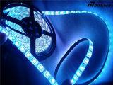 La corda flessibile della striscia di SMD5050 LED illumina 12V/120V