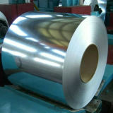 Bobine laminate a freddo dell'acciaio ricoperte zinco Z30-275