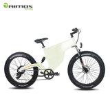vélo électrique de montagne hollandaise de type de 48V 2000W dans la vitesse 65km/H