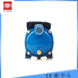 Pompa ad acqua centrifuga elettrica a più stadi dell'acciaio inossidabile di Mindong