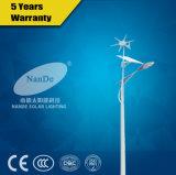 Openlucht LEIDENE van de Prijs van de fabriek de Laagste Hybride Straatlantaarn van de zonne-Wind