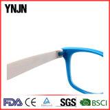 Freies BeispielYnjn Förderung-bunter Plastik scherzt Eyewear