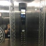 牽引のVvvfの住宅のエレベーターの上昇の乗客のエレベーター