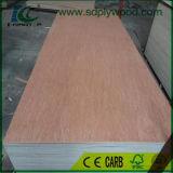 Madeira compensada comercial/madeira compensada extravagante para a mobília da fábrica de Linyi