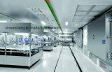 Производственная линия автоматической бутылки Bglx-III упаковывая для Pharmaceuical