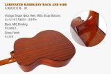 Guitarra acústica de mogno contínua de Cutway da bacia 40-Inch Handmade de Aiersi (SG02SMCN)