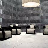 Carrelage en pierre de marbre rustique de plein corps de tuile de porcelaine de matériau de construction avec la surface différente