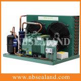 Unidade de condensação de refrigeração ar da baixa temperatura com compressor de Bitzer