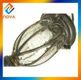Le boîtier en aluminium IP44 imperméabilisent l'éclairage extérieur de lampe de jardin