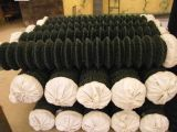 직류 전기를 통한 철망사 담 또는 체인 연결 담
