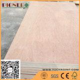 Preço barato da madeira compensada comercial do núcleo do Poplar da venda da fábrica