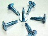 De Spijker /Screws van het roestvrij staal met Beste Kwaliteit