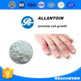 (Alantoína) --Allantoin CAS No .: 97-59-6 cosmética alantoína