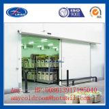 Conservación en cámara frigorífica negativa con los estantes 100t
