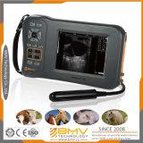 Bovins, équin, ovin, scanner d'ultrason de mode de B (Farmscan L60)