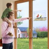 Windowsの鳥の送り装置のシンセンの新しいアクリルの製造業者