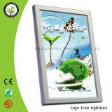 광고를 위한 높은 밝은 LED 황급한 게시판 상자