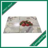 Bandeja FTP600023 del embalaje de la fruta y de la cartulina del envío