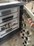 Máquina de empacotamento automática cheia da bandeja do ovo do controle do servo motor