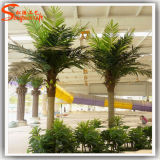 искусственная пальма 5meter для напольного украшения для гостиницы
