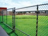 Il PVC ha ricoperto la rete metallica del ferro di collegamento Chain/rete metallica galvanizzata