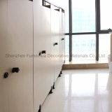 divisorio su ordinazione del cubicolo della toletta reso non valido mobilia di 12mm HPL