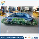 El encerado del PVC embroma la piscina inflable para la venta