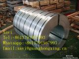 Bobina preverniciata e d'acciaio per materiale da costruzione