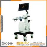 Bcu-50 트롤리 판매를 위한 진단 초음파 기계