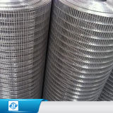 PVCステンレス鋼は建物のための網/Panel/Nettingを囲う溶接されたワイヤーに電流を通した