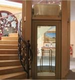 Precio del elevador del hogar de la alta calidad de Joylive
