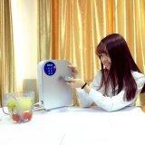 HK-A1의 과일 야채 물 처리 기계 소독 오존 발전기
