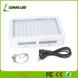 La pianta LED idroponico di alto potere 300W 450W 600W 800W 900W coltiva l'indicatore luminoso