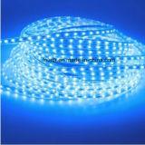 파란 SMD 3014 120LEDs/M LED 지구 램프