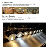 PFEILER LED LED-helle 7W 10W 12W 15W 20W Punkt-Beleuchtung