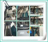 Führung die nicht gesponnenen Handbeutel, die Maschine herstellen Preis festzusetzen (ZXL-B700)