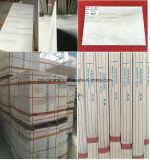 Azulejos de suelo del mármol de la piedra de la porcelana del material de construcción