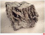 Metal quente do Samarium da venda da pureza da terra rara 99.99%