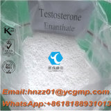Kosher / SGS / ISO Muscle culturismo esteroides Testosterone Enanthate EnanJect 250/600