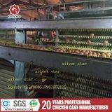 Cage d'oiseau de poulet de machine de ferme avicole avec le système alimentant automatique