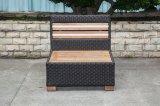 Vimine del teck/sofà del rattan per mobilia esterna (LN-3001-1)