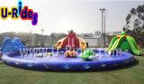 膨脹可能なスライドが付いている水公園フレームのプール