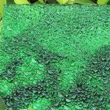 Het In reliëf gemaakte Stevige Blad van het polycarbonaat Diamant voor Decoratie