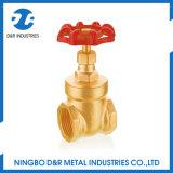 Válvula de porta de bronze da água do furo cheio