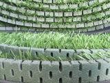 Wasserdichter Polyäthylen-Schaumgummi für künstliches Gras/Fußball
