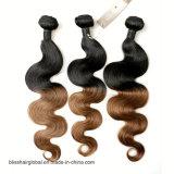 El pelo humano brasileño de Remy para el negro natural y el pelo de la dicha de Brown