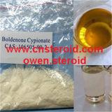 Boldenone Cypionate 분말 보디 빌딩 근육은 Equipoise 근원을 보충한다