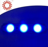 DC12V 백색 방수 IP67 SMD 2835 LED 모듈